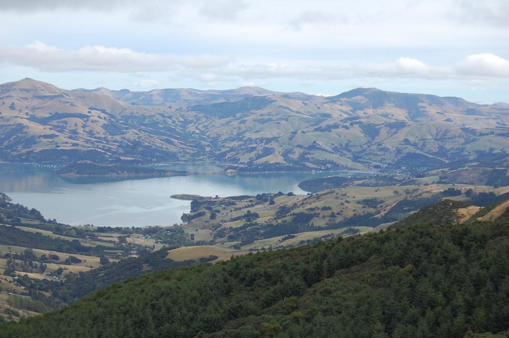 NZ01-Akaroa