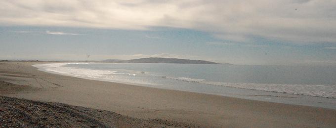 NZ08-strand
