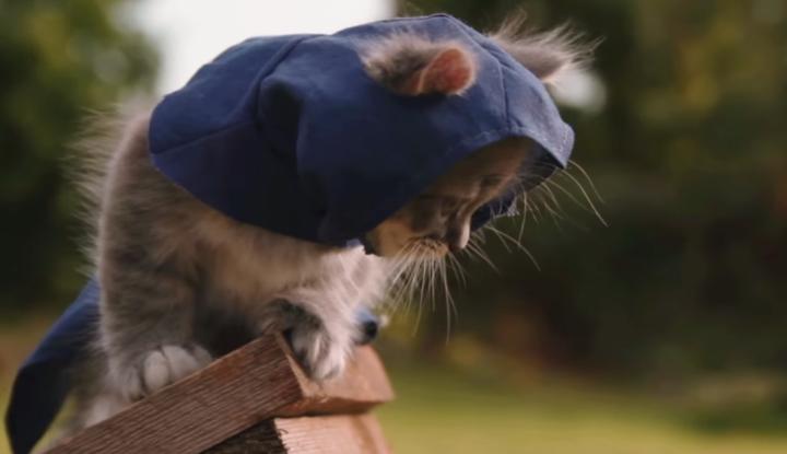 AC-Kitty