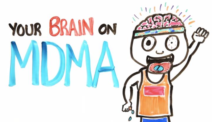 brain-mdma