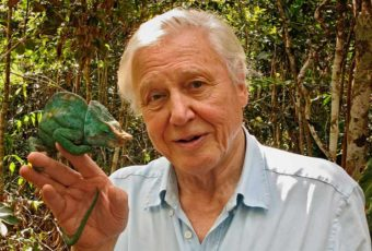David-Attenborough-and-the-Giant-Egg-4-900x506
